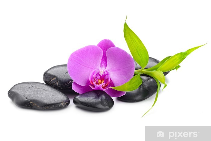 Bamboo /& Orchid peel and stick or classic glue wallpaper mural spa concept with zen stones and  orchid  vlies peel and stick photo W#220