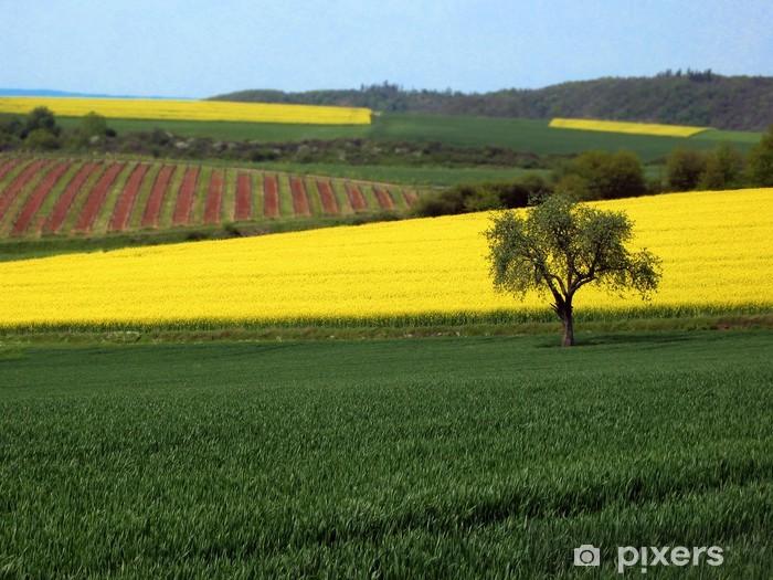 Naklejka Pixerstick Rabs - Krajobraz wiejski