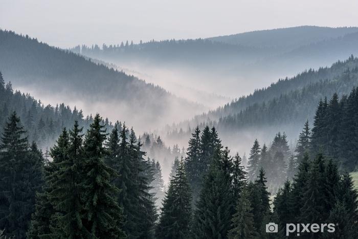 Zelfklevend Fotobehang Mistig landschap. uitzicht vanaf de bergen naar de vallei bedekt met mistig. - Landschappen