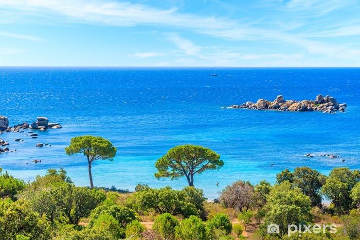 Papier peint vinyle Vue de la célèbre plage de Palombaggia avec des pins et de la mer d'azur, Corse, France - Eau