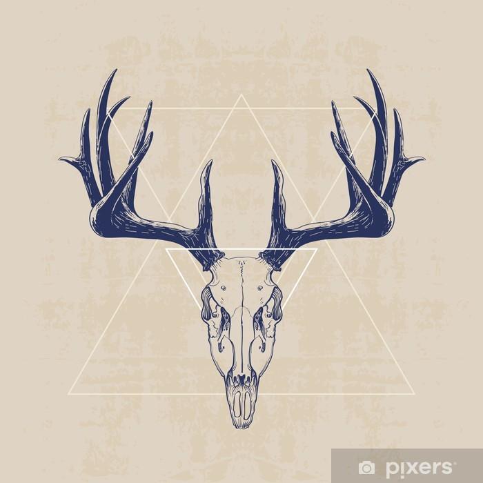 deer skull Poster - Mammals