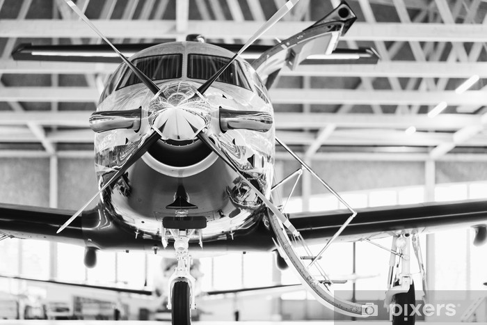 Single Turboprop Aircraft Pilatus Pc 12 In Hangar Stans Switzerland 29th November 2010 Wall Mural Vinyl