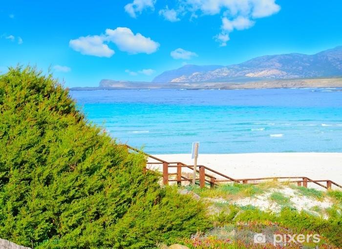 Fototapeta winylowa Plaża la pelosa pod białymi chmurami - Krajobrazy