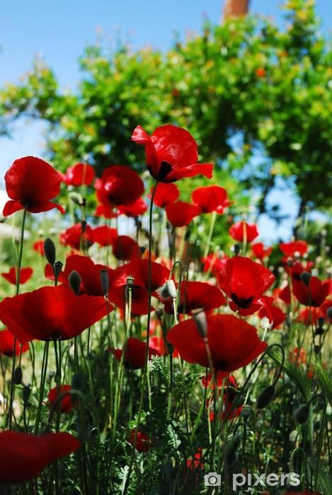 Naklejka Pixerstick Maki - Kwiaty