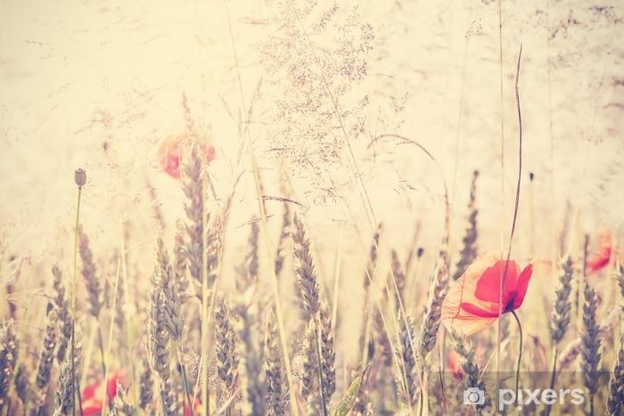 Fototapeta winylowa Retro vintage filtrowane dzikie łąki z kwiatami maku o wschodzie słońca - Rośliny i kwiaty