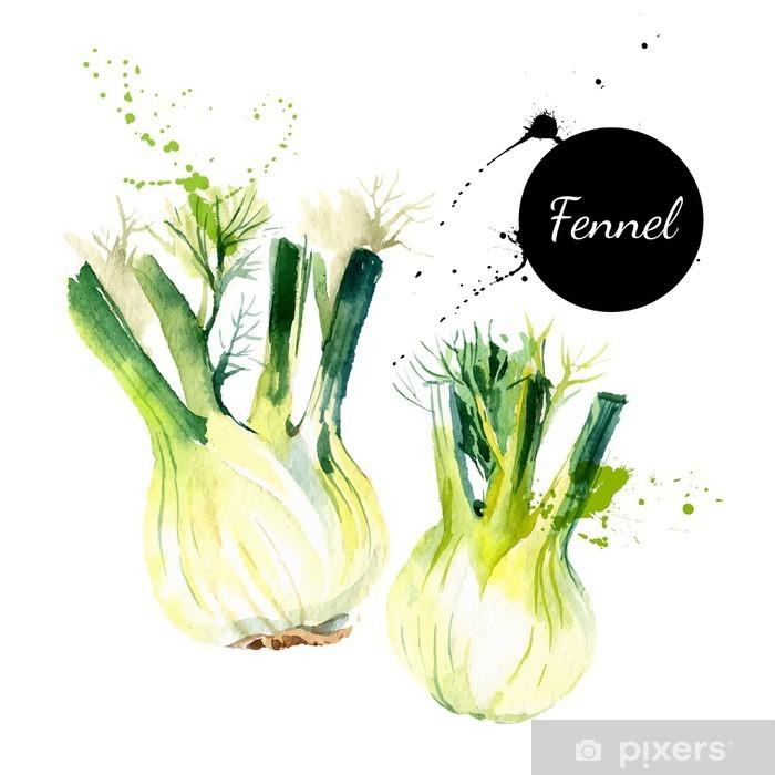 Nálepka na skříň Kuchyň bylinky a koření banner. Vektorové ilustrace. Akvarel - Jídlo