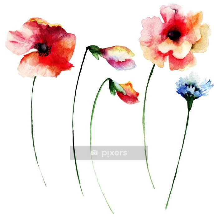 Muursticker Set van de zomer waterverfbloemen - Bloemen en planten