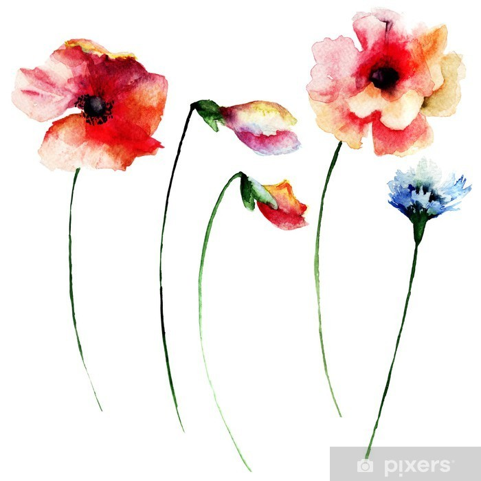 Naklejka Pixerstick Zestaw akwareli letnich kwiatów - Kwiaty i rośliny