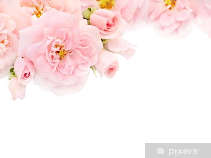 Papier peint vinyle Les roses roses et boutons dans le coin de l'arrière-plan blanc - Fleurs