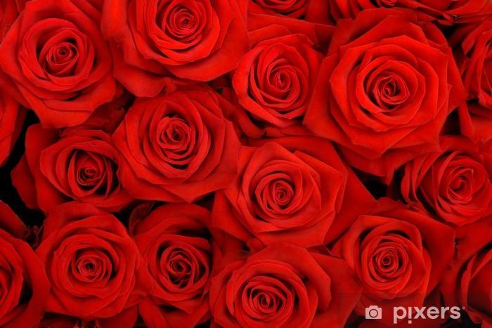 Nálepka Pixerstick Velký banda rudých růží - Témata