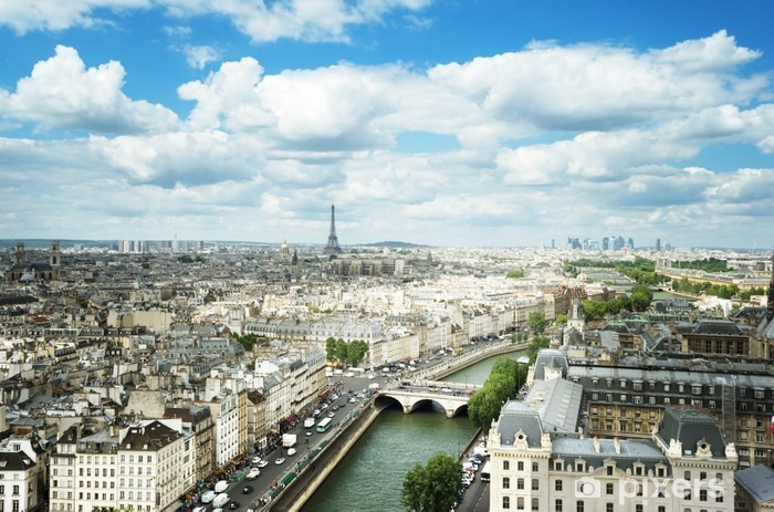 View on Paris, France Vinyl Wall Mural - Travel