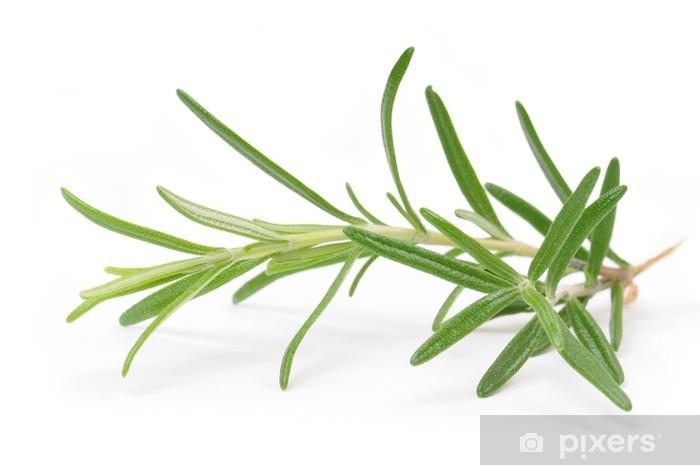Naklejka Pixerstick Rosmarino - Przyprawy i zioła