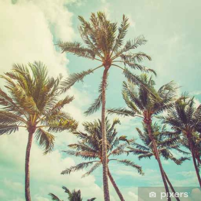 coconut palm tree and blue sky clouds with vintage tone. Pixerstick Sticker - Hobbies and Leisure