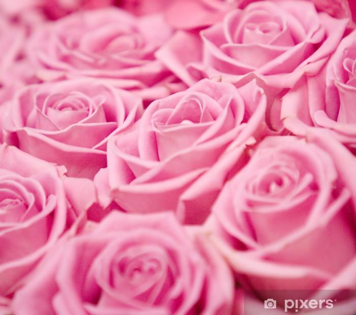 fototapete rosa rosen hintergrund pixers wir leben um zu ver ndern. Black Bedroom Furniture Sets. Home Design Ideas