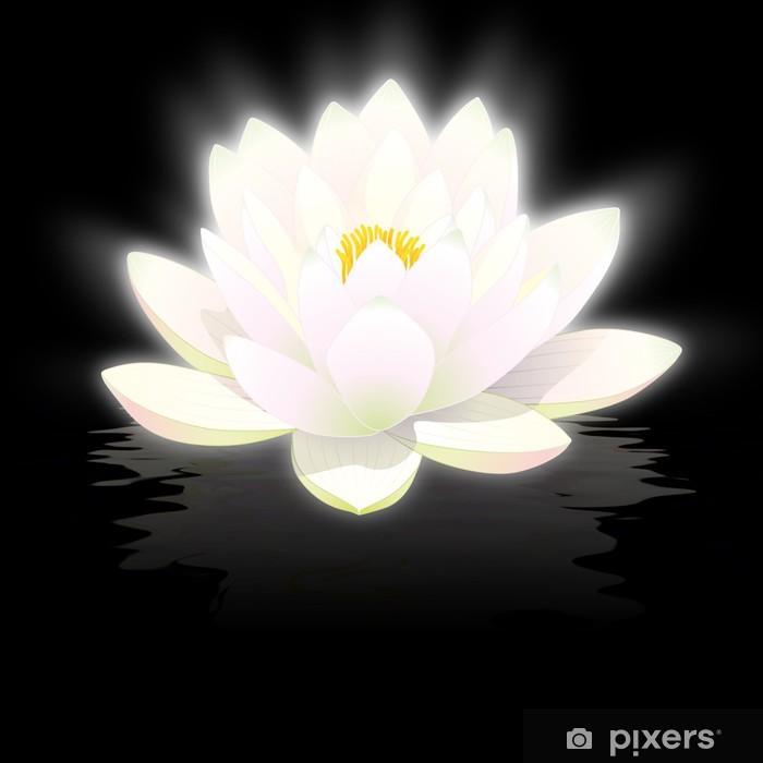Fleur De Lotus fleur de lotus blanc sur fond noir avec reflets wall mural • pixers