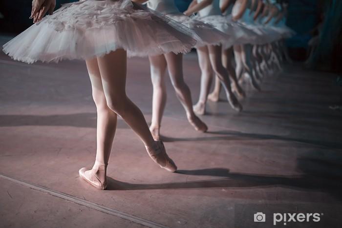 Vinylová fototapeta Dancers in white tutu synchronized dancing - Vinylová fototapeta