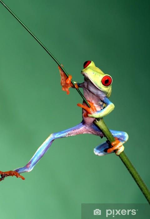 Naklejka Pixerstick Czerwony eyed drzewa żaba - Inne Inne