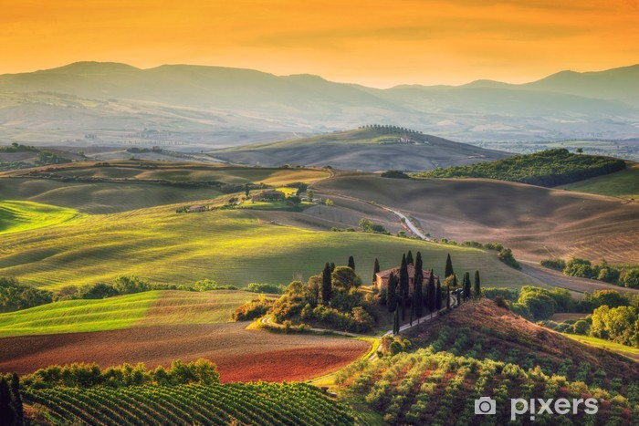 Fototapet av Vinyl Tuscany landskap på soluppgången. Toskansk gård hus, vingård, kullar. - Europa