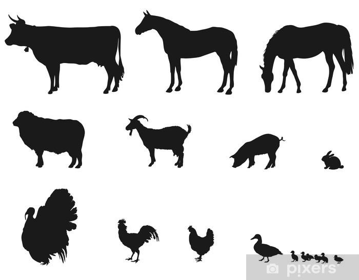 Sticker Pixerstick Animaux vivant sur la ferme - Animaux