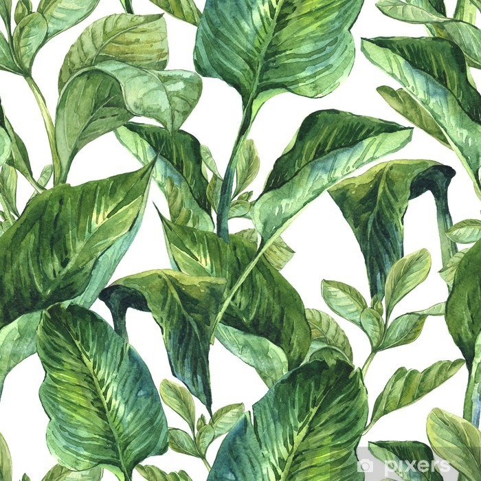 Watercolor with tropical leaves Self-Adhesive Wall Mural - Plants and Flowers