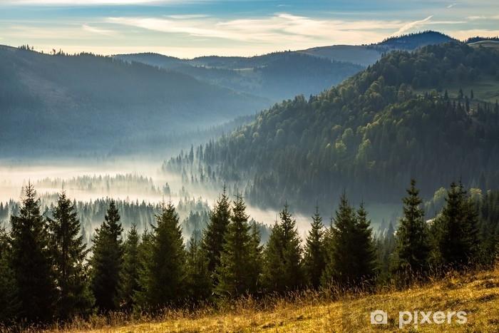 Vinyl Fotobehang Naaldbos in mistige Roemeense bergen bij zonsopgang - Landschappen