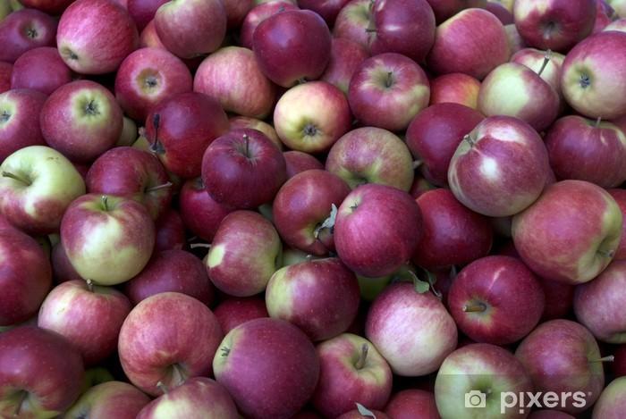 Fototapeta winylowa Jabłko, jabłka, Elstar - Tematy
