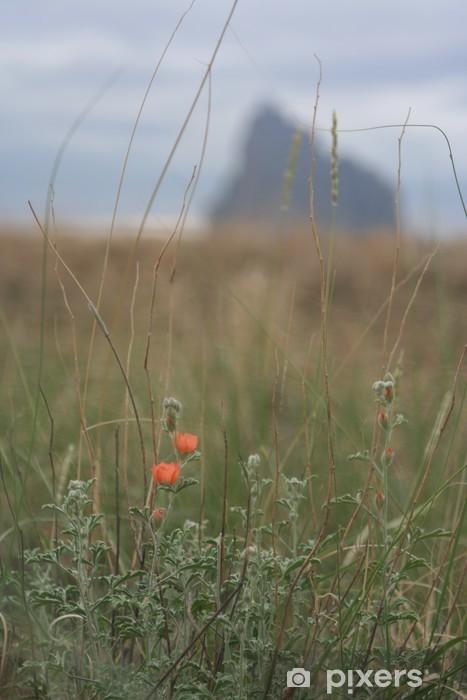 Vinyl-Fototapete Orange Blumen auf shiprock - Blumen