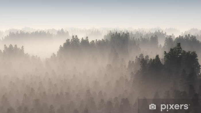 Vinilo Pixerstick Denso bosque de pinos en la niebla de la mañana. - Paisajes
