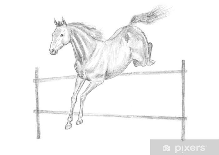 springendes pferd zeichnen einfach