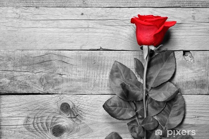 Carta Da Parati Rosa Rossa Su Sfondo Bianco E Nero Di Legno Pixers