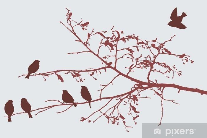 Cam ve Pencere Çıkartması Baharda kuşlar - Hayvanlar