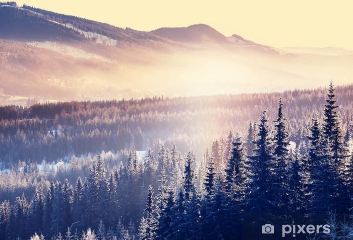 Papier peint vinyle Hiver Montagne - Saisons