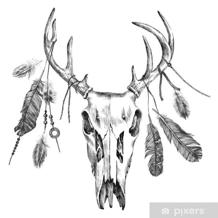 Fototapeta winylowa Ilustracja z czaszką jelenia i piórami - Zwierzęta