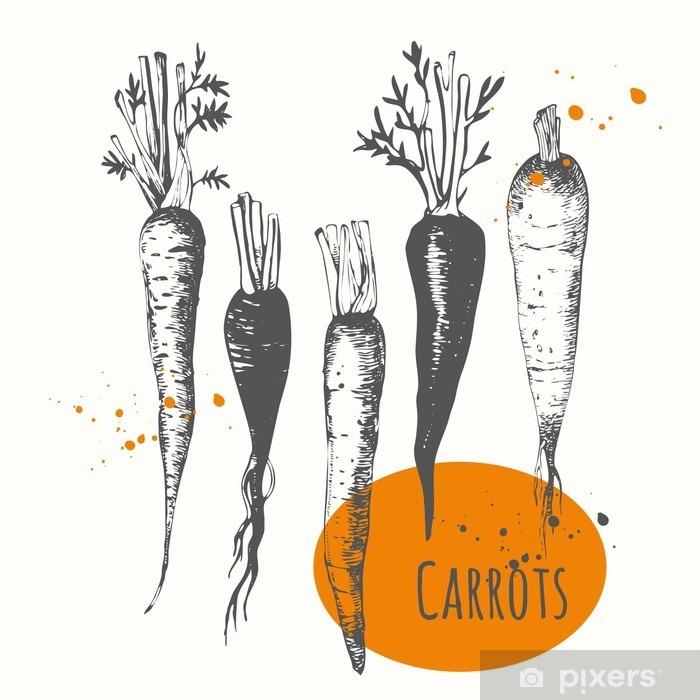Fotomural Estándar Conjunto de zanahorias dibujadas a mano. alimentos bosquejo blanco y negro. - Comida