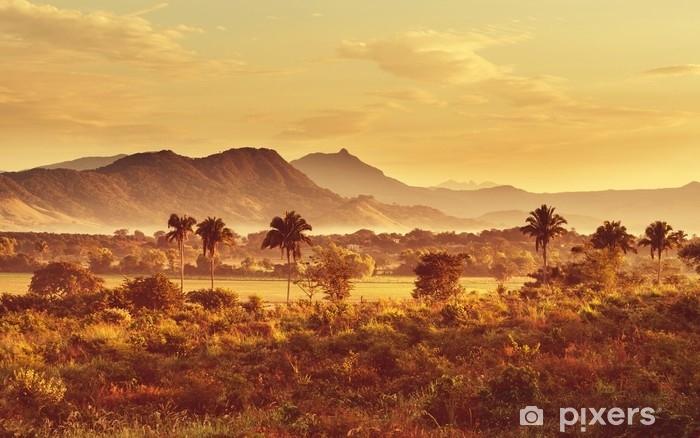 Vinyl-Fototapete Dschungel in Mexiko - Landschaften