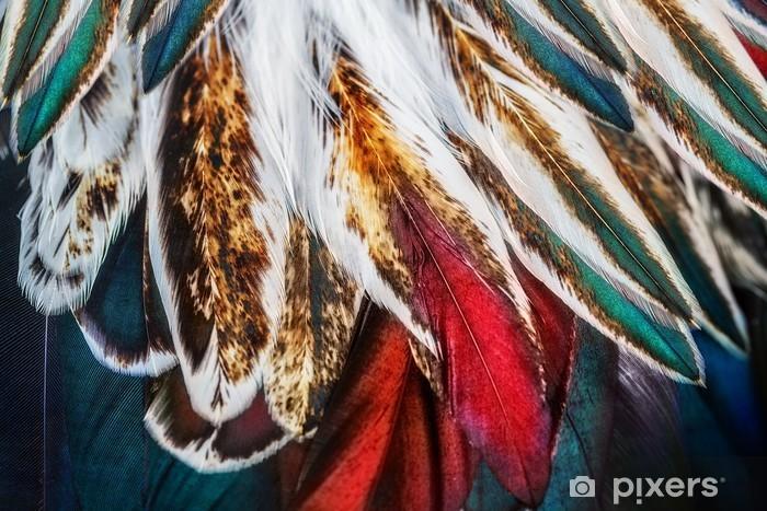 Sticker pour ordinateur portable Groupe de plumes marron brillant d'un oiseau - Animaux