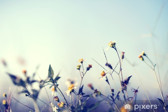 Sticker Pixerstick Photo vintage de la nature de fond avec des fleurs et des plantes sauvages - Plantes et fleurs