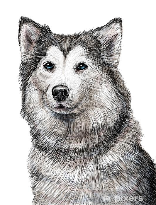 Hundekopf Zeichnen