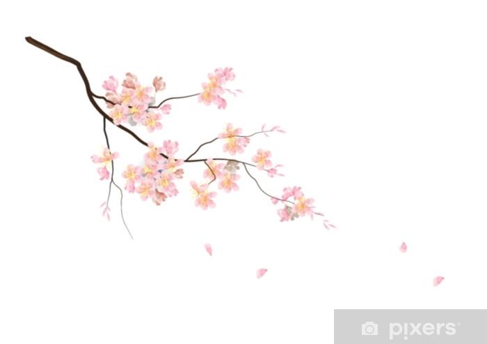 Adesivo Fiori Di Ciliegio Con Ramo Su Sfondo Bianco Illustrazione