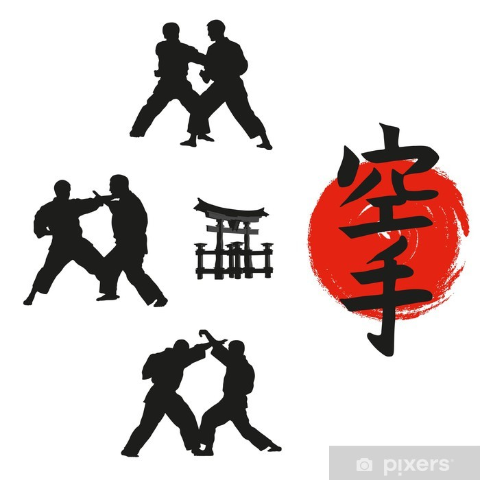 Hieroglyph of karate and men demonstrating karate. Vinyl Wall Mural - Individual Sports