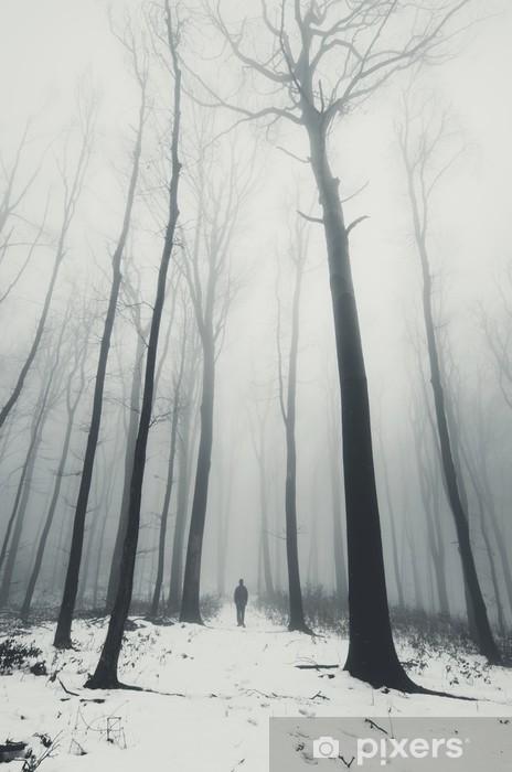 Fototapeta samoprzylepna Człowiek w lesie z wysokich drzew w zimie - Krajobrazy