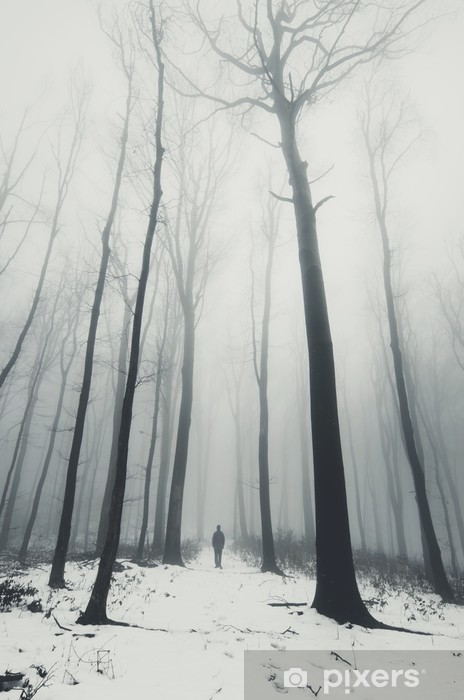 man in forest with tall trees in winter Vinyl Wall Mural - Landscapes