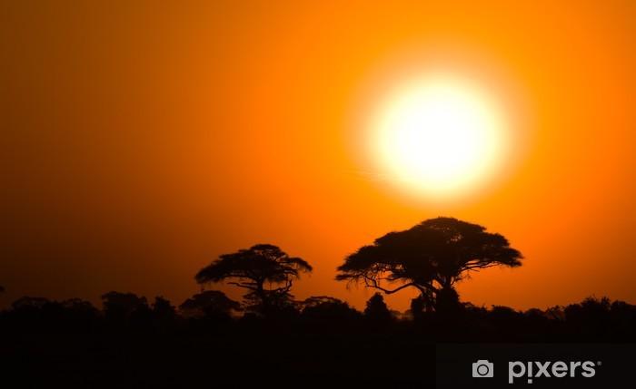 Naklejka Pixerstick African sunset w savannah, Kenia - Afryka