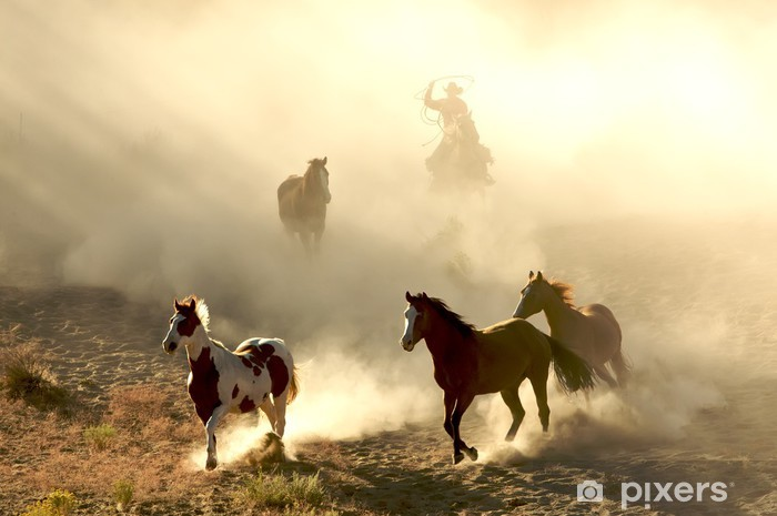 Fototapeta winylowa Konie słońcem i cowboy Galopujący i przez pustynię - Tematy