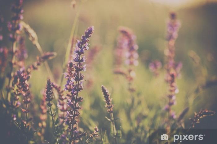 Adesivo Pixerstick Wild flower - Piante & Fiori