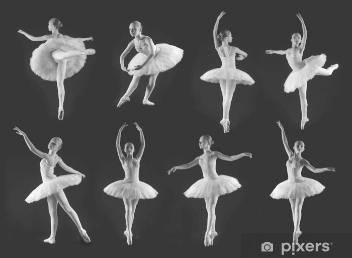 Ballet Poses Wall Mural Pixers We Live To Change
