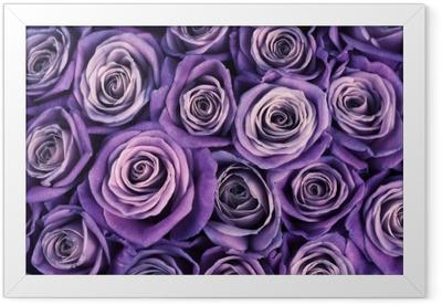 Rose flowers background Framed Poster