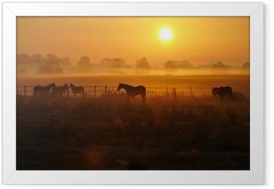Sonnenaufgang auf einer Pferdeweide Framed Poster