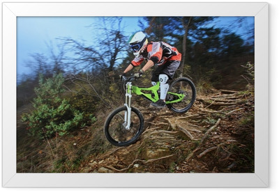 A young man riding a mountain bike downhill style Framed Poster