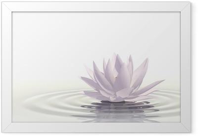 Floating waterlily Framed Poster